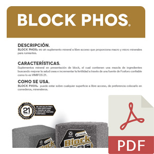 Block_phos