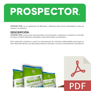 Propector