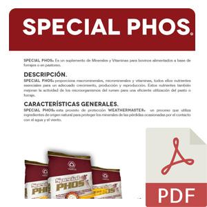 Special_pos